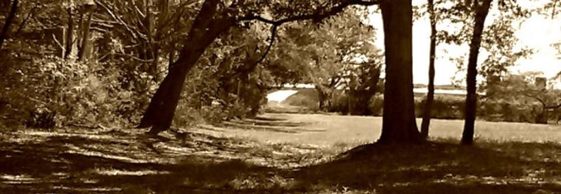 cropped-cropped-mckenzie-beach-sepia.jpg