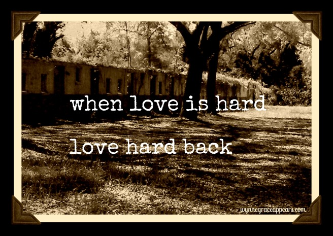 wall of windows when love is hard