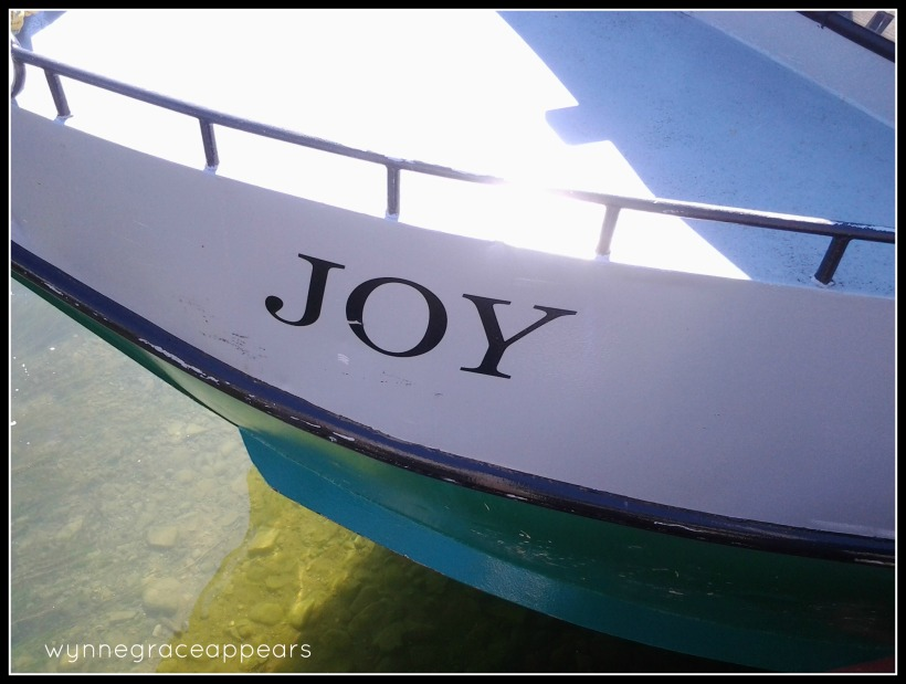 joy boat leland