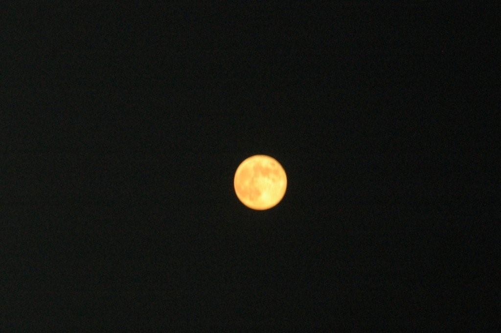 Blue Moon HMM