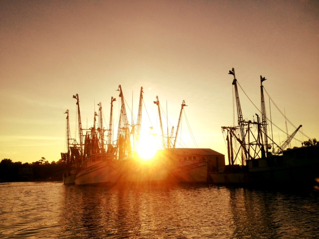 shrimp boat sunsets HM