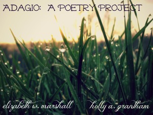 blades of grass adagio project