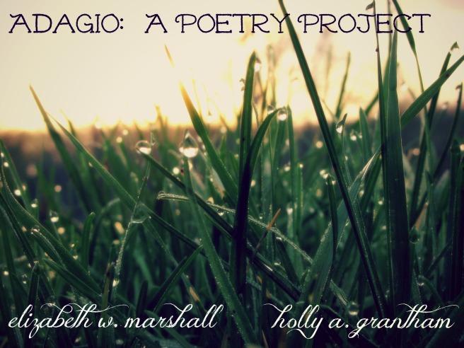 blades of grass adagio project