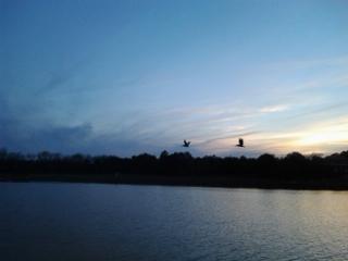 sunset over jeremy creek