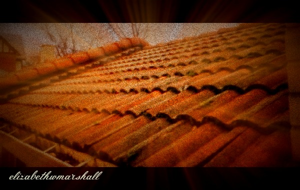 rolled tile roof in oak park