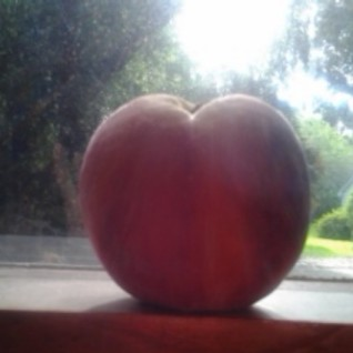 peach 2013
