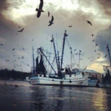 shrimp boats on at night