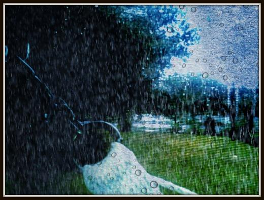 rain hammock chain