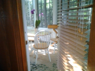 orchid and sun through door slats