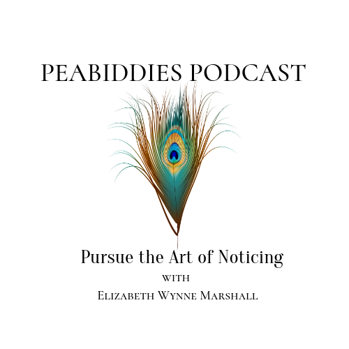 Peabiddies Podcast: Pursue the Art of Noticing, Season Two – Episode